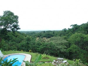 Where to stay when birding Carara, Costa Rica; Cerro Lodge