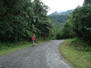 Tapanti National Park- good, middle elevation birding in Costa Rica