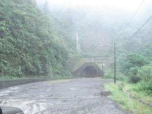 May, 2010 is a rainy time for birding in Costa Rica