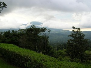 View of Volcan Miravalles from Heliconias Lodge, Costa Rica