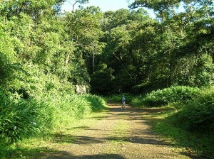 birding rainforests San Ramon, Costa Rica