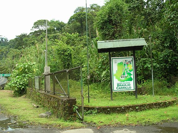 Updates on birding at the Quebrada Gonzalez ranger station, Costa Rica