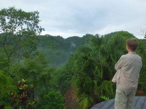 Birding in Costa Rica this August? Fantastic Deal at Luna Lodge, one of the Best Birding Lodges in Costa Rica