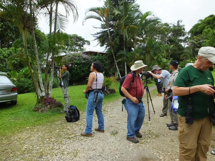 Recent Impressions from Birding Costa Rica at Rancho Naturalista